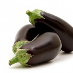 aubergine noir Bio