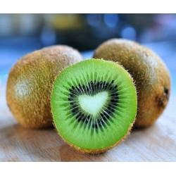Gros Kiwi France bio